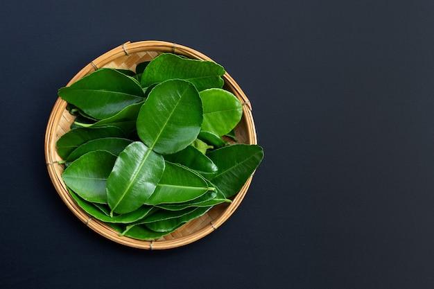 Бергамот кафр лайм оставляет свежий ингредиент травы на темном фоне.