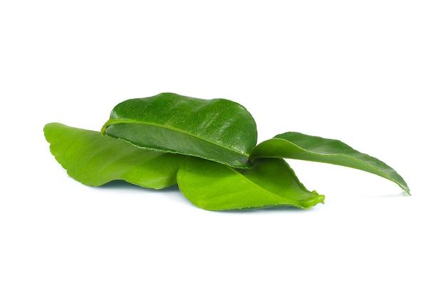 ベルガモットは白の葉