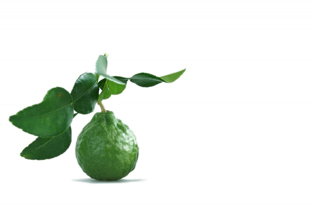 Bergamot thai herb for spa and hair treatment for hair loss problem