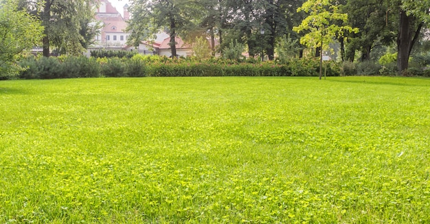 Bernardine gardens park in the center of vilnius