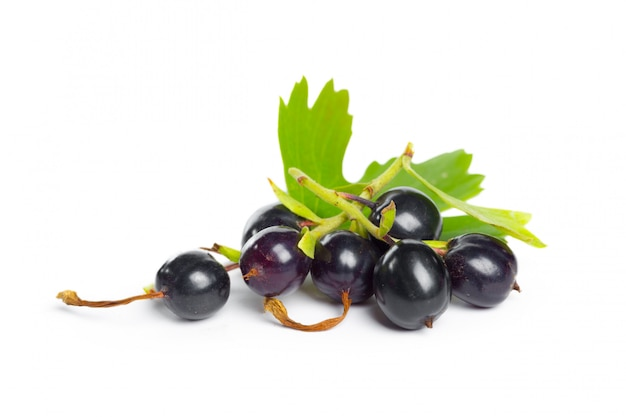Berries black currant with green leaf. fresh fruit, isolated.