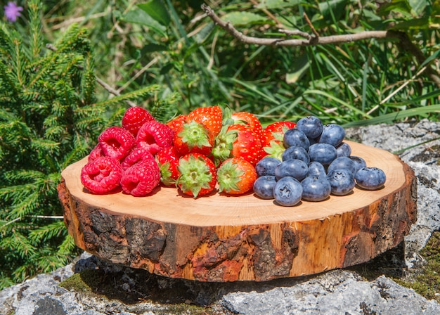 Berries on cutting board with green grass background