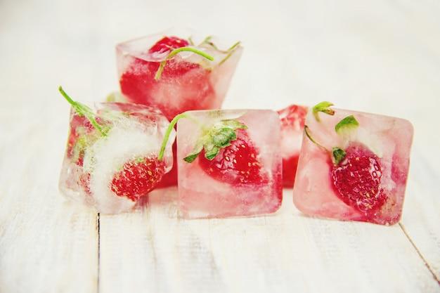 Berries frozen in ice cubes. selective focus.