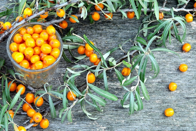 Berries and leaves of sea-buckthorn on a wooden background. the harvest of sea-buckthorn.