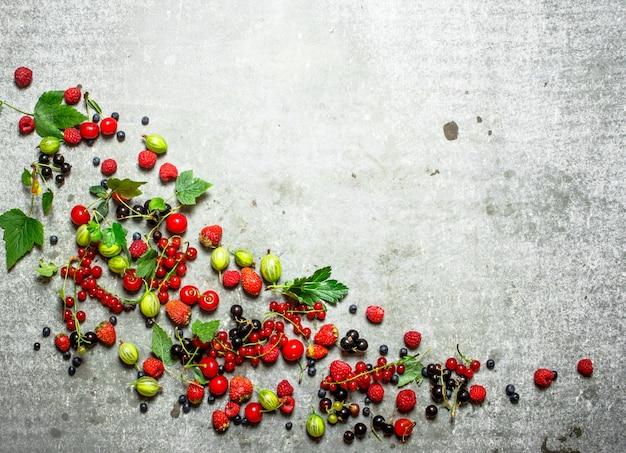 민트와 열매는 돌 배경에 나뭇잎.