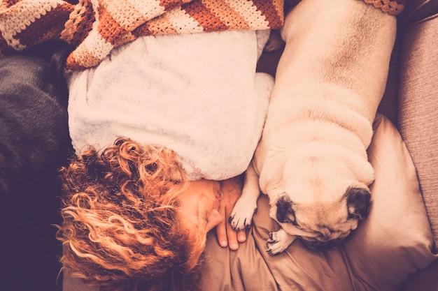 좋은 퍼그 강아지와 아름다운 소용돌이 머리 백인 여자와 영원히 가장 친한 친구는 사람과 동물의 부드러움 사이의 소파 절대 우정 개념에 아침에 함께 자