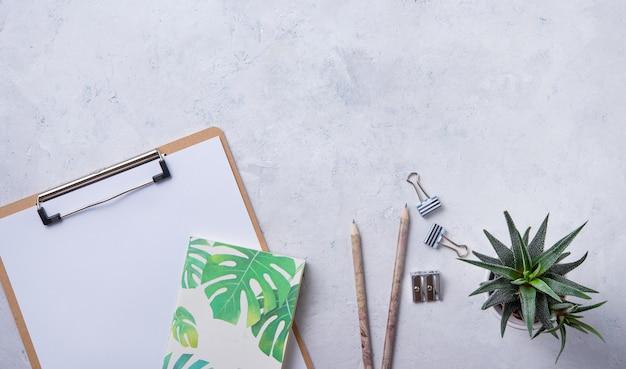 宿題。ビジネスフラット横たわっていたメモ、鉛筆、多肉植物、白いbetonの背景に