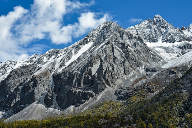 Beutiful nature of colorful autumn in yading national level reserve, daocheng, sichuan province, china.