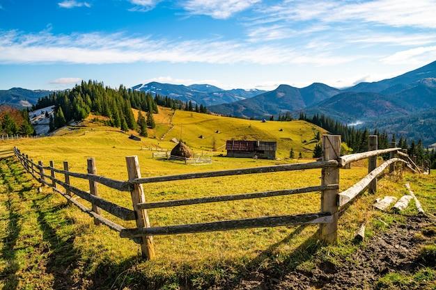 울창한 침엽수림이 내려다보이는 언덕에 있는 푸른 초원의 매혹적인 아름다운 여름 풍경. 흐린 따뜻한 여름날의 산
