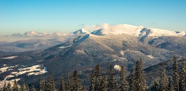 Завораживающий красивый вид на гористую холмистую долину и еловый лес зимой.