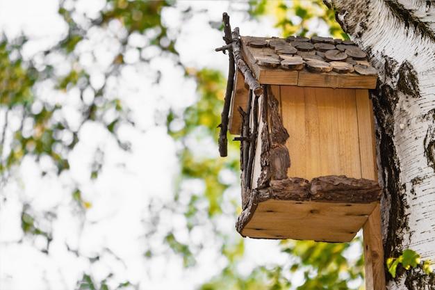 公園の白biの木に木製の巣箱。