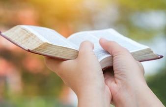 Bible women reading the Holy Bible.,Women reading a book