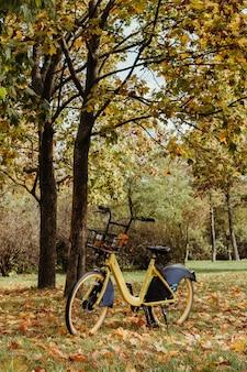 自転車カーシェアリング。秋の公園に自転車が立っています。