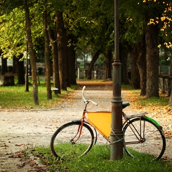 Bicycle in estonian park, european culture postcard