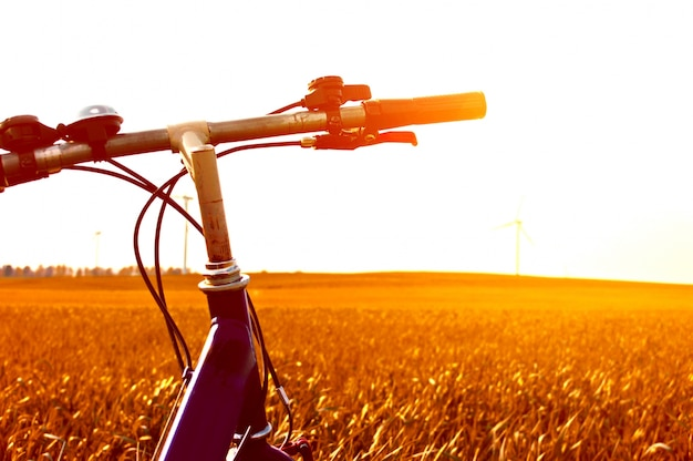 Bicycle in a field at sunset