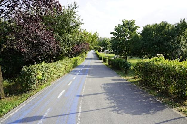 Велосипедная дорожка, велосипедная дорожка в парке, спуск с холма