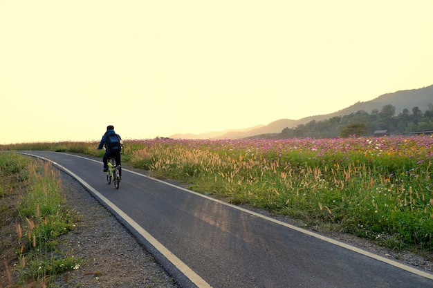 Bicycle lene on road and flowers landscape