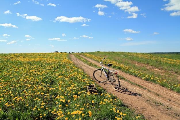 Велосипед на сельской дороге