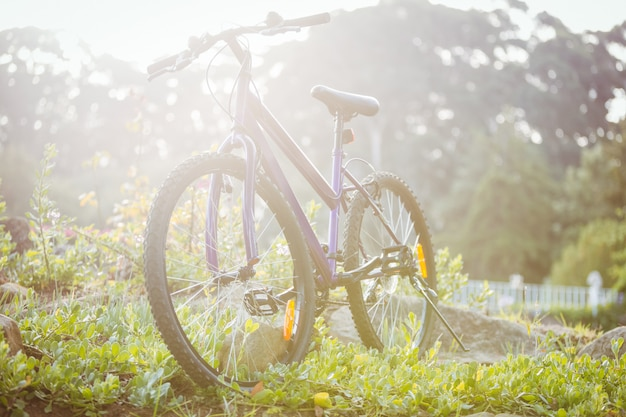 草の上に駐輪されている自転車