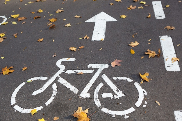 A bicycle path with a bicycle road sign and markings drawn on the asphalt. the autumn track in the park is strewn with dry yellow maple leaves. cycling in autumn, traffic rules