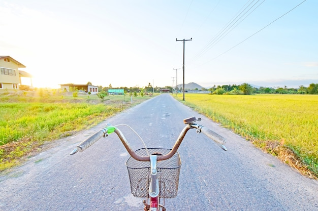 Bicycle rider view