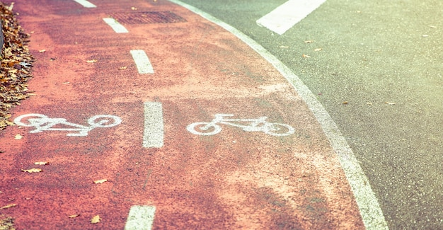 Bicycle road symbol on a street bike lane with autumn leaves in the sidewalk border