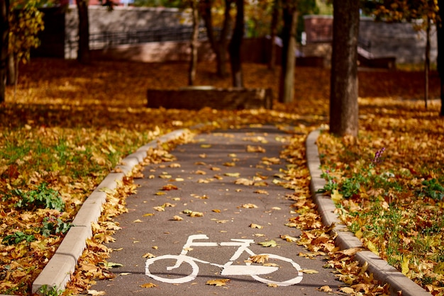 Bicycle sign on the road in the autumn park