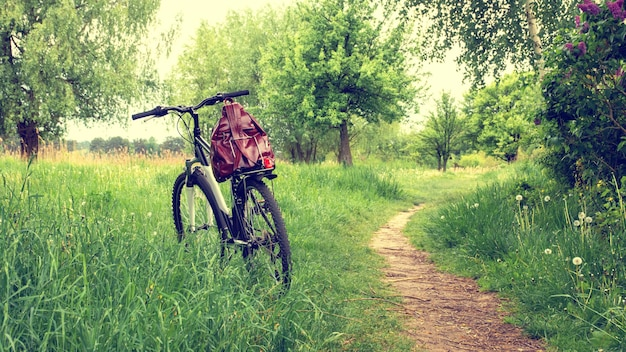 Bicycle with a backpack on the trunk on the background of nature in summer