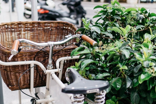 Bicycle with basket next to a bush