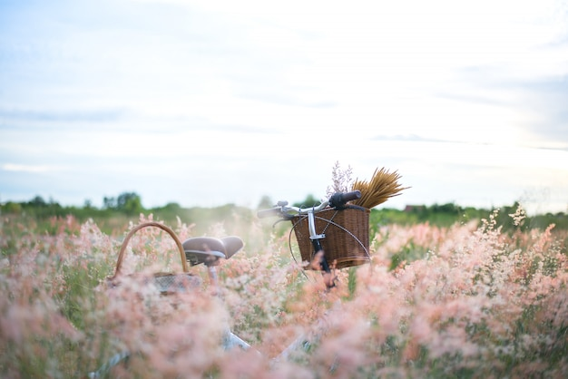 Bicycle with basket and guitar of flowers in meadow vintage, select and soft focus