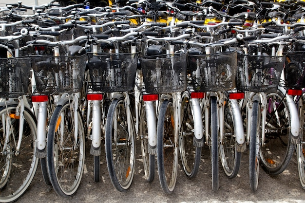 Bicycles renting shop pattern rows parking
