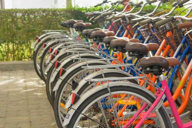 Bicycles that are lined up in rows in the bicycle park