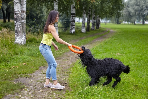 큰 검은 개는 걷는 동안 장난감의 도움으로 여성 소유자와 놀고 있습니다.