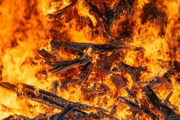 Big bonfire closeup, red fire flames