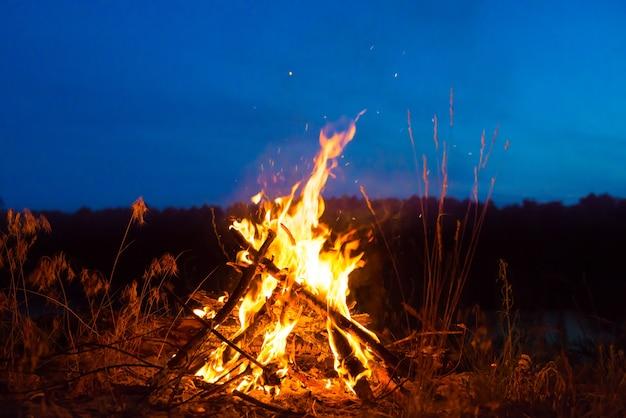 많은 별이 있는 짙은 푸른 밤하늘 아래 숲에서 밤에 큰 모닥불