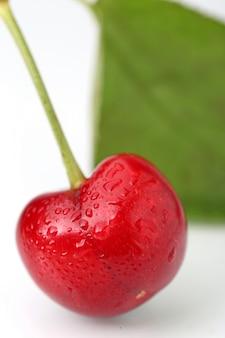 Grande ciliegia su sfondo bianco