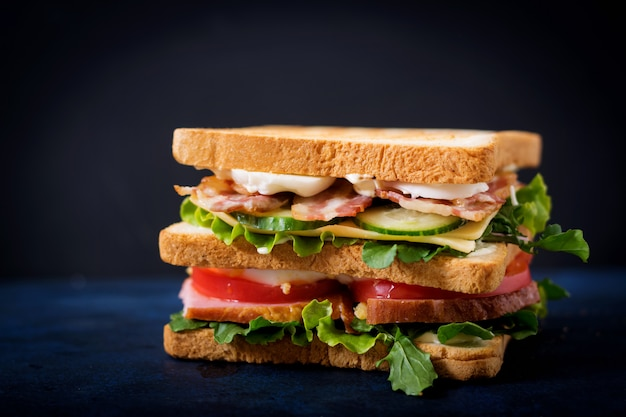 Big club sandwich with ham, bacon, tomato, cucumber, cheese, eggs and herbs on dark table