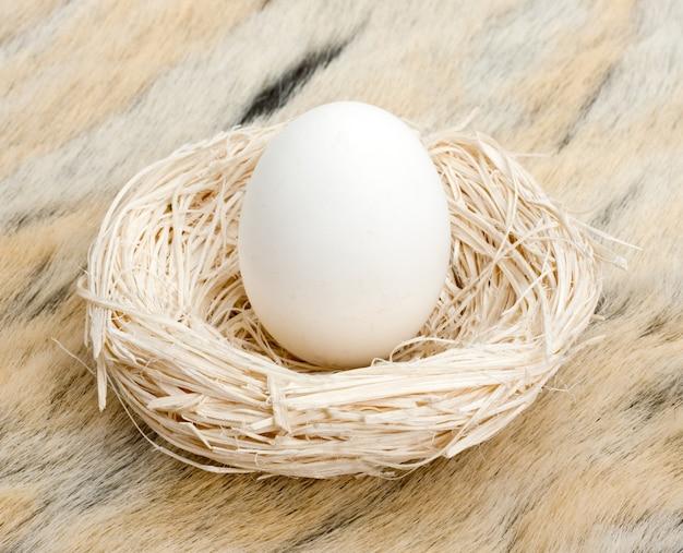 Большое яйцо в маленьком гнезде