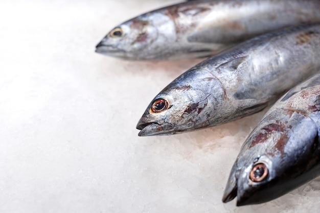 氷の上で新鮮なマグロの生魚