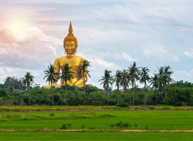 Большая статуя золотого будды в храме ват муанг в провинции ангтонг