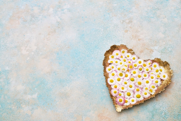 Big heart from daisy flowers on blue pastel background. copy space, top view. holiday background.