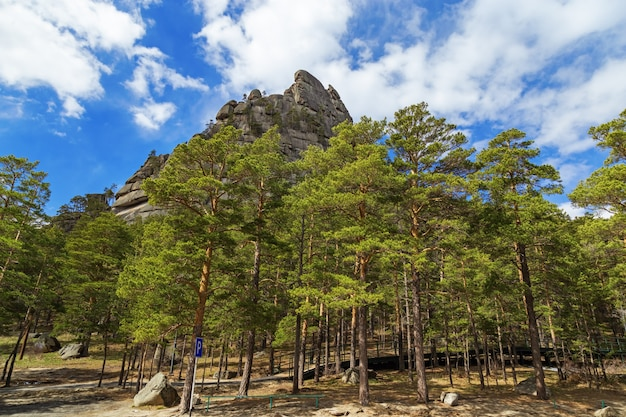 Big mountain, blue sky and forest. burabay national nature park in republic of kazakhstan. picturesque mountain landscape. may, 2019.
