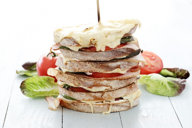 Grande sandwich a più strati