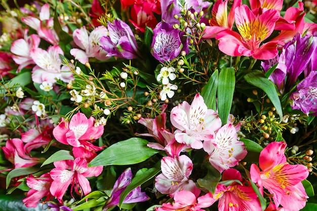 큰 여러 가지 빛깔의 alstroemeria 멋진 여름 꽃 꽃다발