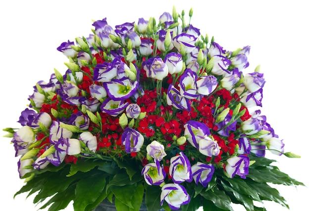 큰 여러 가지 빛깔의 멋진 여름 꽃 꽃다발 흰색 절연