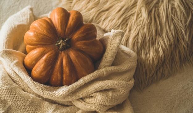 Большая оранжевая тыква на теплом свитере. тыква в мягком пуловере. день благодарения - оранжевые тыквы.