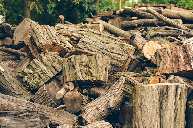 Big pile of felled logs and stumps is outdoors