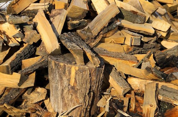 冬に備えた薪の大きな山