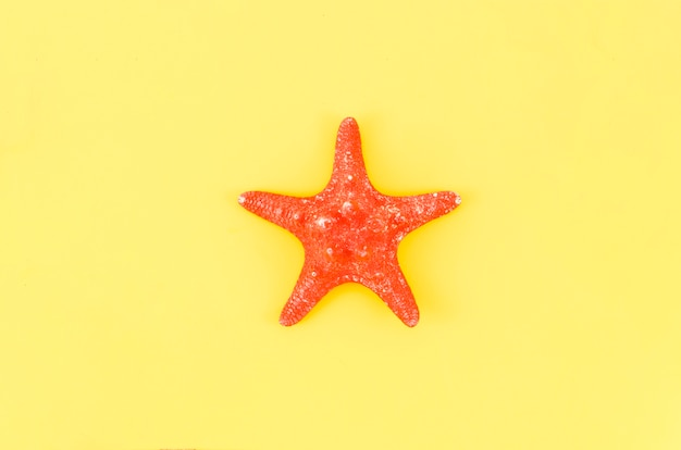 Big red sea star on yellow table