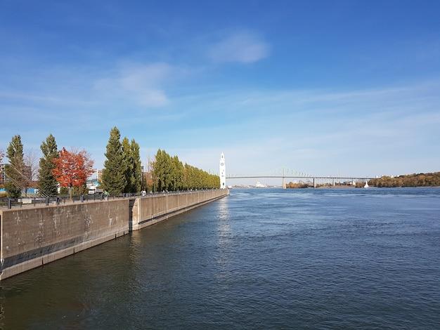 周りに木がある大きな川